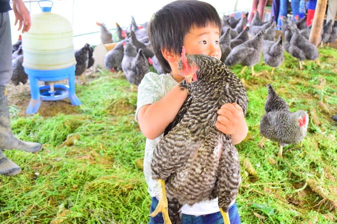 """大野村農園で体験する """"生涯忘れない経験""""【大人の食育】レポート"""