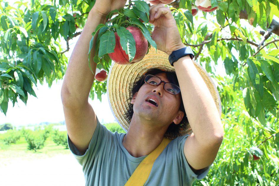 皇室献上桃の郷、福島県桑折町のはねだ桃園へのバーチャルツアーを開催しました